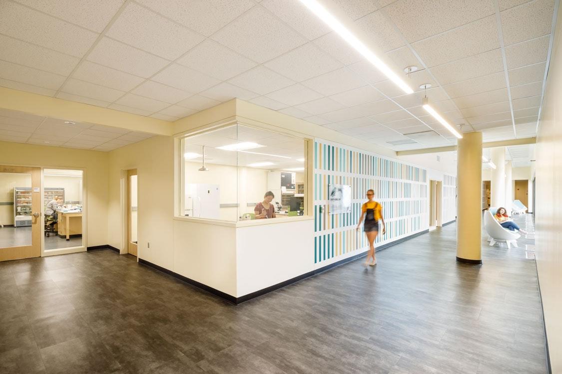 Hollins University Dana Science Center Renovation
